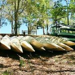 Canoe rental are available locally