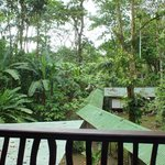 View from top floor of jungle lodge