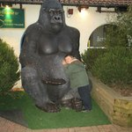 Our son loved the park gorilla!