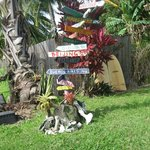 cute road sign outside of Hana