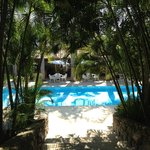 Local do pequeno almoço & piscina