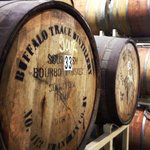 Beer aging in bourbon barrels