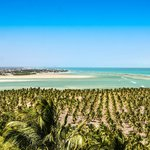  Alagoas