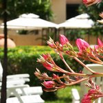 Solemare Accommodation Alghero
