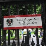THE BEAUTIFULL VOLKSGARDEN WITH ROSES