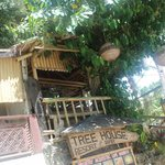 Bilde fra Tree House Beach Resort