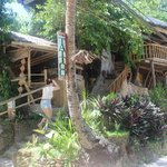 Tree House Beach Resort Foto
