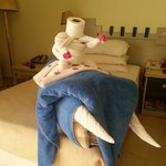  A towel elephant and rider - new one on me!