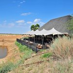  The deck of the main building overlooking the watering hole, were animals put on a show