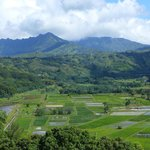  Hanalei Valley Look Out