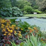 Cornwall Garden Tours Private Day Tours