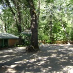  Cedar Lodge Motel Grounds 1