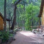  Cabins along the creek