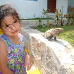 Mi hija y la iguana