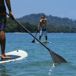 Paddle board at Punta Uva