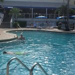 michael at the sheraton pool!
