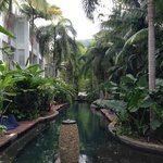 serenity pool, beautiful gardens
