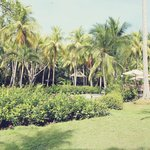 Ylang Ylang resort