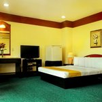 Paragon Suites