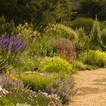 Discover and Enjoy Denver Botanic Garden