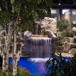 Waterfall Pool View