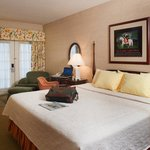  One King Deluxe Guest Room