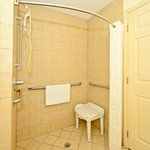 Mobility Accessible Walk In Shower