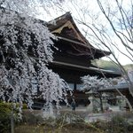  Zenkoji temple-spring 2013