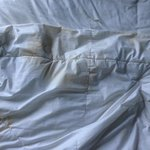 piss stains on the bed cover
