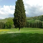  Villa Campestri