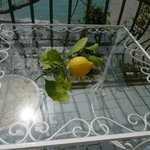 Our table on the veranda