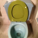 Toilet: Note the vivid colour contrast and missing rubber seat support.