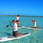  paddle boarding and finding starfish!