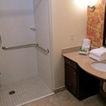  Waterview Suite Bathroom