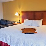  Hampton Inn Louisville-Airport Hotel King