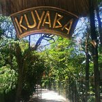 Welcome To KUYABA