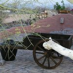 Wagon for flowers hand made for us