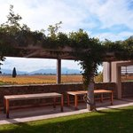 Outdoor area at Wither Hills Winery
