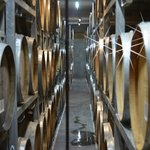 The Cellar at Wither Hills Winery