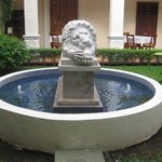 one of the lions in the patio