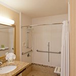 ADA Guest Bathroom with Roll-In Shower