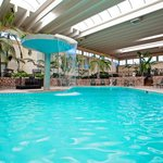 Indoor Heated Atrium Swimming Pool