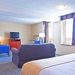 Executive King Room in Elk Grove near Bensenville