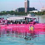  Boston Duck Tours  - Charles River