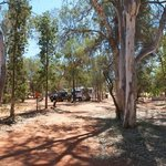 Shady spot at Jim's Place, Stuart's Well Roadhouse.