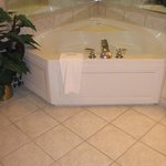  Our Executive Suite offers a two person Jacuzzi tub
