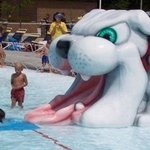  McPherson Water Park Bulldog