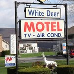 Foto di White Deer Motel