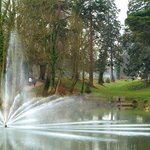 Water Feature - Northwood Park