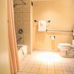  Handicap assisted Bathroom
